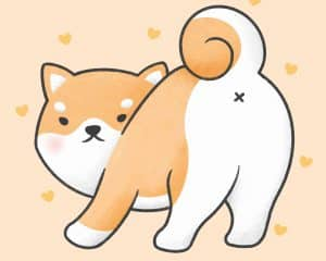 Are Shiba Inus Good With Other Dogs 1