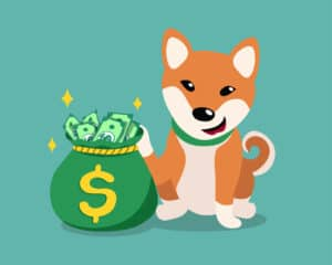 How Expensive Are Shiba Inus 1
